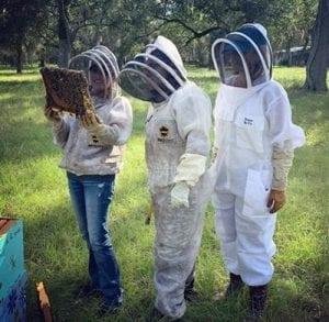 Bee-A-Keeper tour