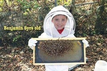 SweetNes Honey Bee Educated